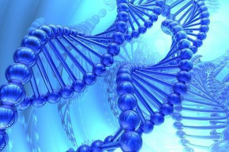 USA: Google s'engage davantage pour accélérer la recherche sur le génome | Nicole Pochat | Scoop.it