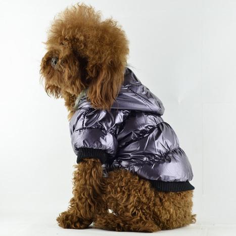 Trendy Water-proof & Cold-proof Dog Coat – PetSuperDeal.com | petsuperdeal | Scoop.it