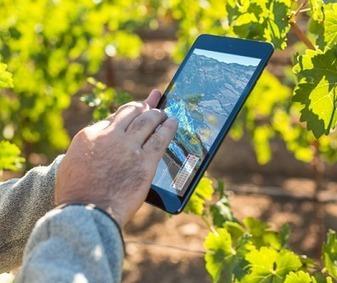 Applications mobiles : tablettes et smartphones écrivent le futur de la vigne et du vin | Vin 2.0 | Scoop.it
