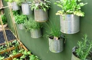Micro potager : solution à l'alimentation urbaine ? | JARDINS | Scoop.it