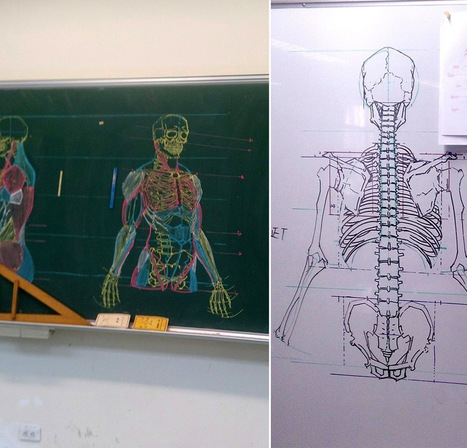 Impermanent Anatomical Drawings on Chalkboards by Chuan-Bin Chung... | The doctor will see you now... | Scoop.it