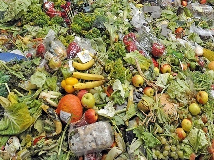 The Under-Recognised Public Health Problem of Food Waste | Public Health | CGIAR Climate in the News | Scoop.it
