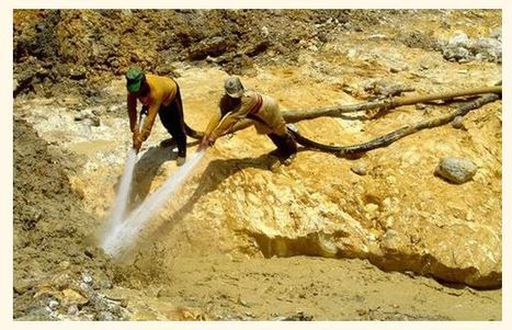 Amazon Gold Rush: Gold Mining in Suriname   Rainforest EXPLORER:  News & Notes   Scoop.it