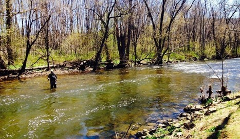 Trout Unlimited Restoring River Channels to Improve Trout Habitat ... | The Great Outdoors | Scoop.it