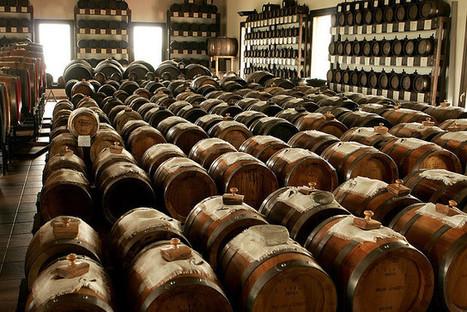 Visiting Balsamic Vinegar producers in Modena | Italia Mia | Scoop.it