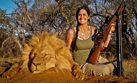 Can there be sustainable Lion hunting in Africa? - Conservation Action Trust | Wildlife News | Scoop.it