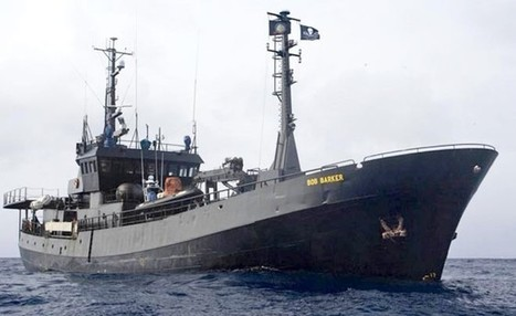 Sea Shepherd says it's ready for more clashes with Japanese whalers - The Japan Daily Press | Sea Sheperd | Scoop.it