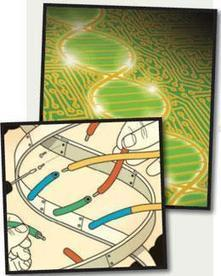 Five hard truths for synthetic biology : Nature News   Science H   Scoop.it