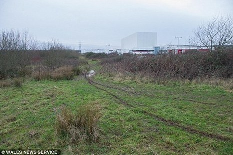 Body of a newborn baby is found dumped in woodland in south Wales - DailyMail.co.uk | Denizens of Zophos | Scoop.it