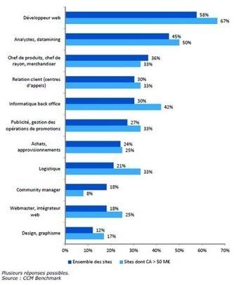100 000 emplois dans le e-commerce fin 2014. - Emploi e-commerce | STEVEN ABAJOLI | Scoop.it