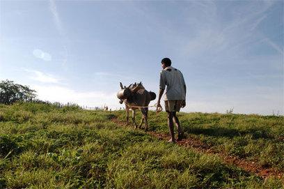Comprar tierras para tener agua | esglobal | Nuevas Geografías | Scoop.it