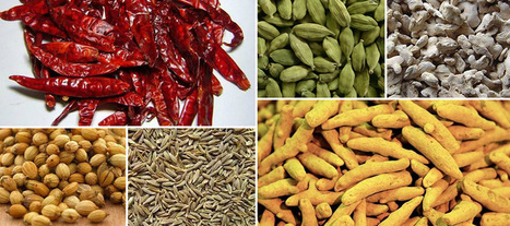 Best organic spice exporters | Shopping | Scoop.it