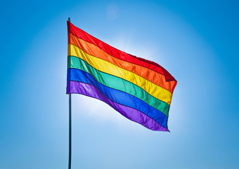 Pride rainbow flag burnt on flagpole during UBC's OUTweek | Teacher-Librarianship | Scoop.it