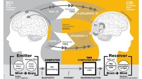 Brain-to-brain communication achieved across 5,000 miles   Science!   Geek.com   UnBoxed - The Curated Influencer   Scoop.it