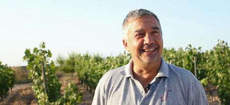 Avec une équipe de choc, découvrez les vignerons français dans les vignes, au chai et chai eux!! | Verres de Contact | Scoop.it