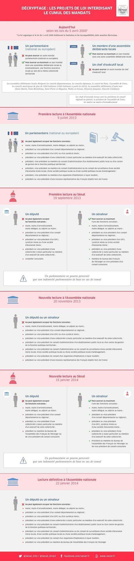 Infographie : comprendre le vote sur le non-cumul des mandats | Politique, Economie & Social - France & International | Scoop.it