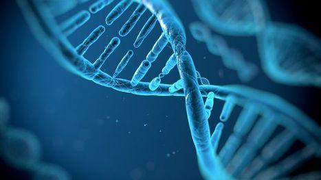 Une autre voie pour décrypter le génome - Figaro Santé | Evidence Based Medecine | Scoop.it
