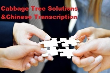 Cabbage Tree Solutions  Chinese Transcription | Email Marketing | Scoop.it