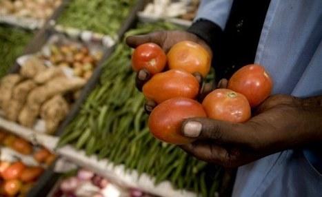 Les sénégalais sont-ils prêts à tout plaquer pour l'agriculture? | Questions de développement ... | Scoop.it