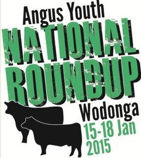 Angus Youth - ROUNDUP   Cattle Industry   Scoop.it
