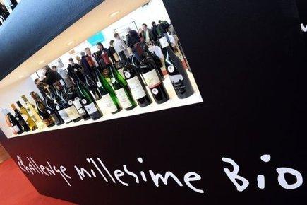 Le vin biologique français en plein boum | Vin Bio et naturel | Scoop.it
