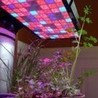 Importance of Hps lights kits