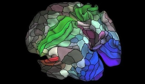 Updated Brain Map Identifies Nearly 100 New Regions | Learning, Teaching & Leading Today | Scoop.it