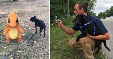 When This Animal Shelter Asked Pokémon Go Players To Walk Their Dogs, They Didn't Expect This | Caring About Pets | Scoop.it