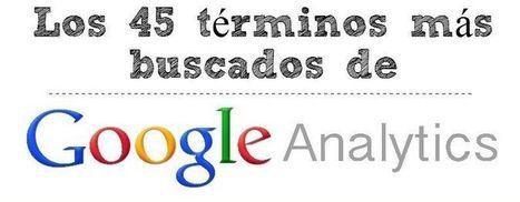 Infografía: Los 45 términos más buscados de Google Analytics | Educacion, ecologia y TIC | Scoop.it