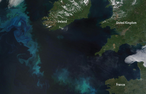 What Causes the Atlantic to Bloom? | Remote Sensing of ocean & coastal waters | Scoop.it