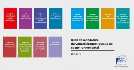 Bilan de la mandature 2010-2015 du CESE | Actualités | Actualités et agenda | Les relations internationales | Scoop.it