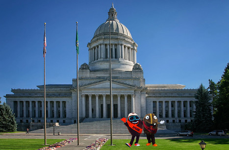 Washington State Adopts Coffee As Official State Drink ! | Coffee News | Scoop.it