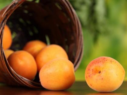 Vertus et bienfaits de l'abricot | Curiosités planétaires | Scoop.it