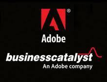 Need a reliable CMS system? Try Adobe Business Catalyst | E-Strands Digital Marketing News | Scoop.it
