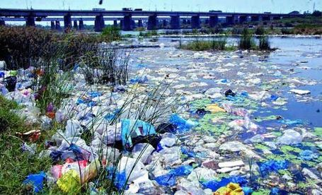 No measures taken to curb plastic menace | Deccan Chronicle | Marine Litter | Scoop.it