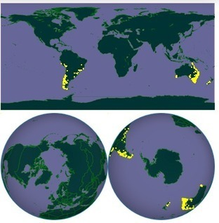 iPhylo: Using orthographic projections to map organism distributions | Geographic Information Technology | Scoop.it