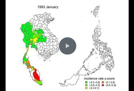 El Niño pourrait provoquer début 2016 une vaste épidémie de dengue en Asie du Sud-Est | EntomoNews | Scoop.it