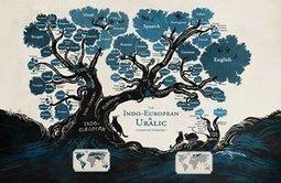 A language family tree - Minna Sundberg | TELT | Scoop.it