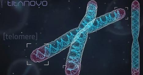 Titanovo Quantifies Your Cells To Help You Live A Longer Life   Digital Health Revolution   Scoop.it