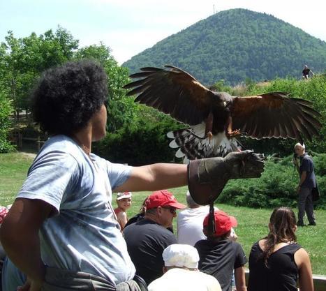 Arreau : rendez-vous en terre  des Aigles d'Aure | Vallée d'Aure - Pyrénées | Scoop.it