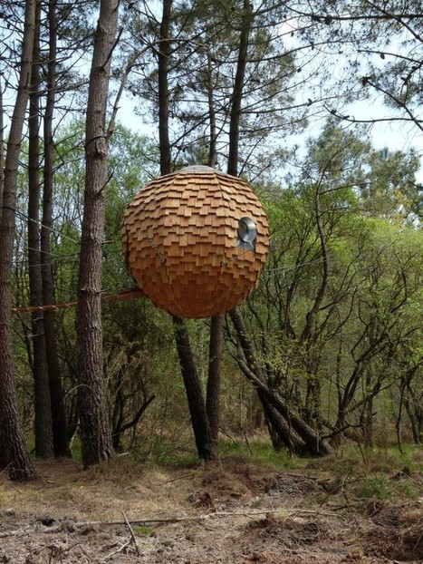 insolite une bulle pour dormir dans les arbre. Black Bedroom Furniture Sets. Home Design Ideas