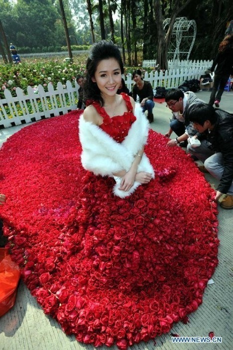 Man Proposes to Girlfriend with Dress Made from 9,999 Red Roses | Strange days indeed... | Scoop.it
