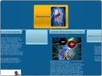 "Biomagnetismo - Mind Map | Campos magnéticos, ""BIOMAGNETISMO"" | Scoop.it"