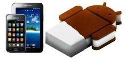 Galaxy S y Galaxy Tab no tendrán Ice Cream Sandwich | VIM | Scoop.it