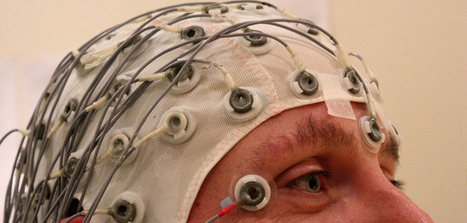 EEG study findings reveal how fear is processed in the brain - PsyPost | Brain Imaging and Neuroscience: The Good, The Bad, & The Ugly | Scoop.it