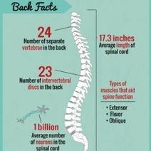 Infographic: Hurting for Help | sciatica relief | Scoop.it