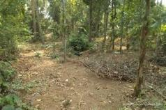Land for Sale in Irinjalakuda,Thrissur | 9581 | Sichermove | Property for sale | Scoop.it