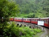 Enjoy weather of Shimla with Holiday India Tour and Travels | shimla tour packages | Scoop.it