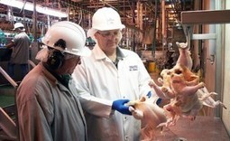 All Federal Meat Inspectors To Be Furloughed on 11 Scheduled Days   Food Safety News   Food issues   Scoop.it