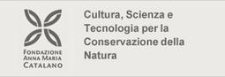 Fisco regionale: opportunità di risparmio e maggior efficienza realmente possibile? – Non Sprecare | FISCO ITALIA | Scoop.it